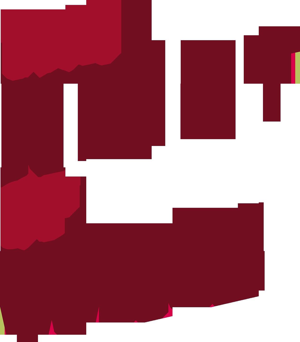 The Night of Wine